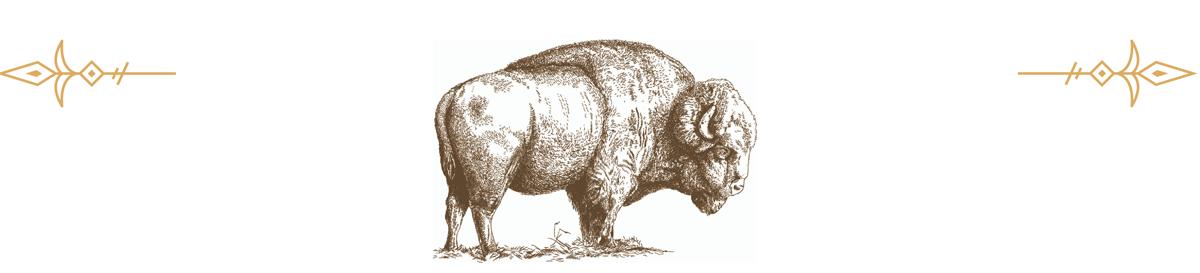 bison-arrows