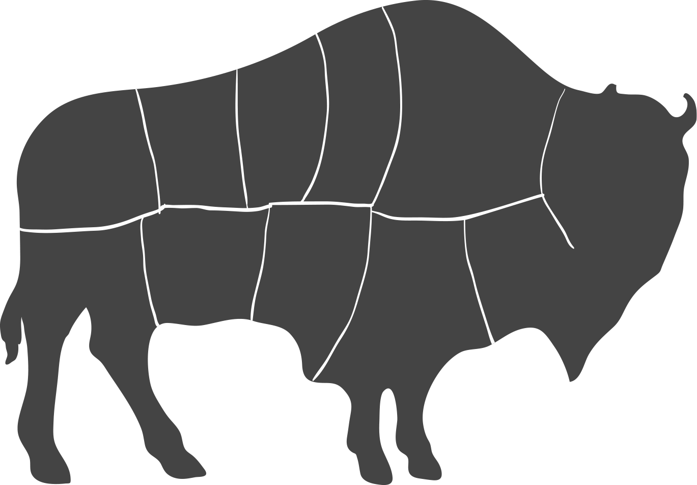 the-bison